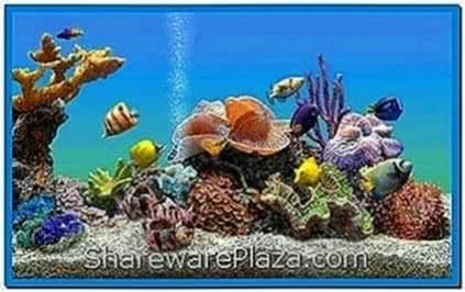 Mac Screensavers Fish Aquarium