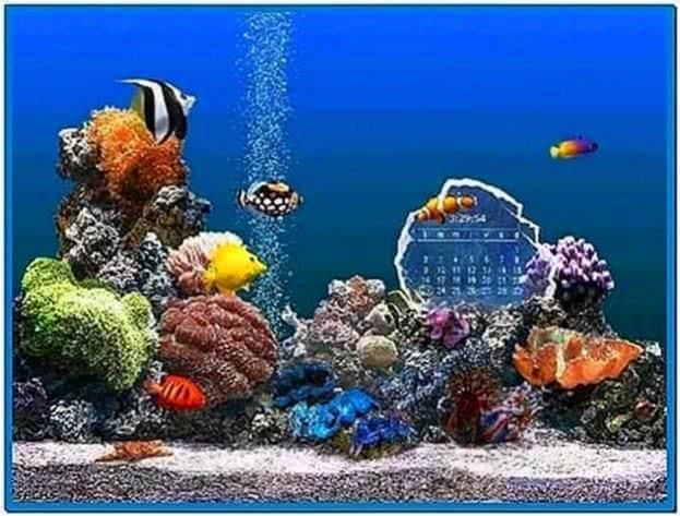Marine Aquarium 2 Time Screensaver