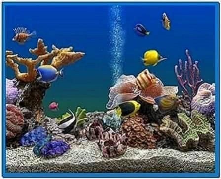 Marine Aquarium 3 Screensaver Mac