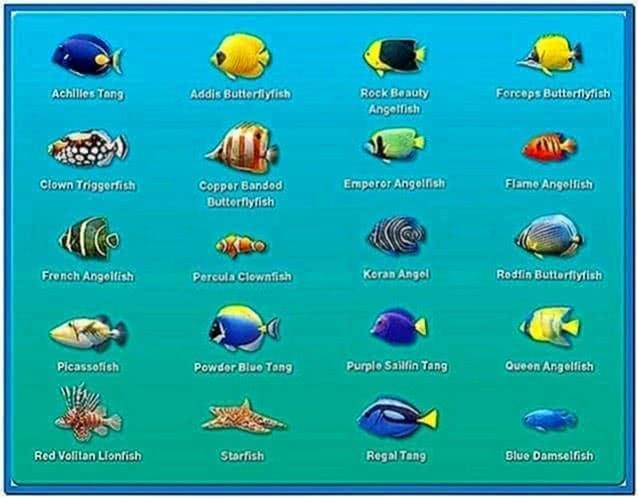 Marine Aquarium Deluxe Screensaver Version 3