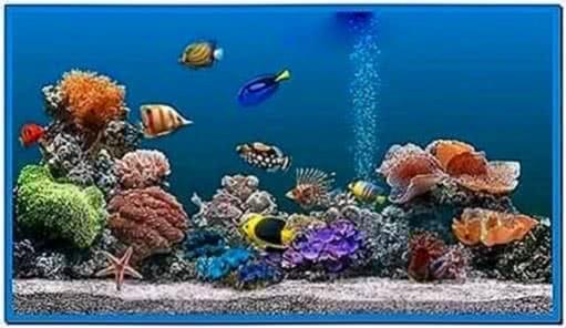 Marine aquarium screensaver 3 5 9