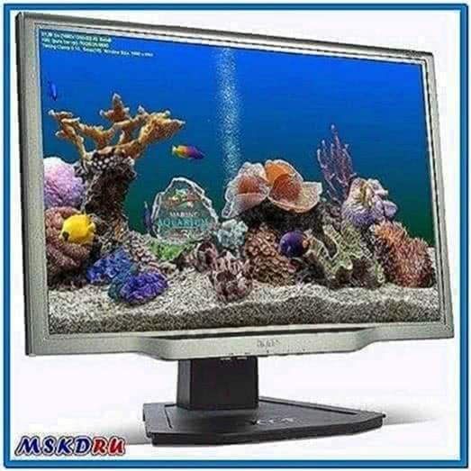 Marine Aquarium Screensaver 3.5.9