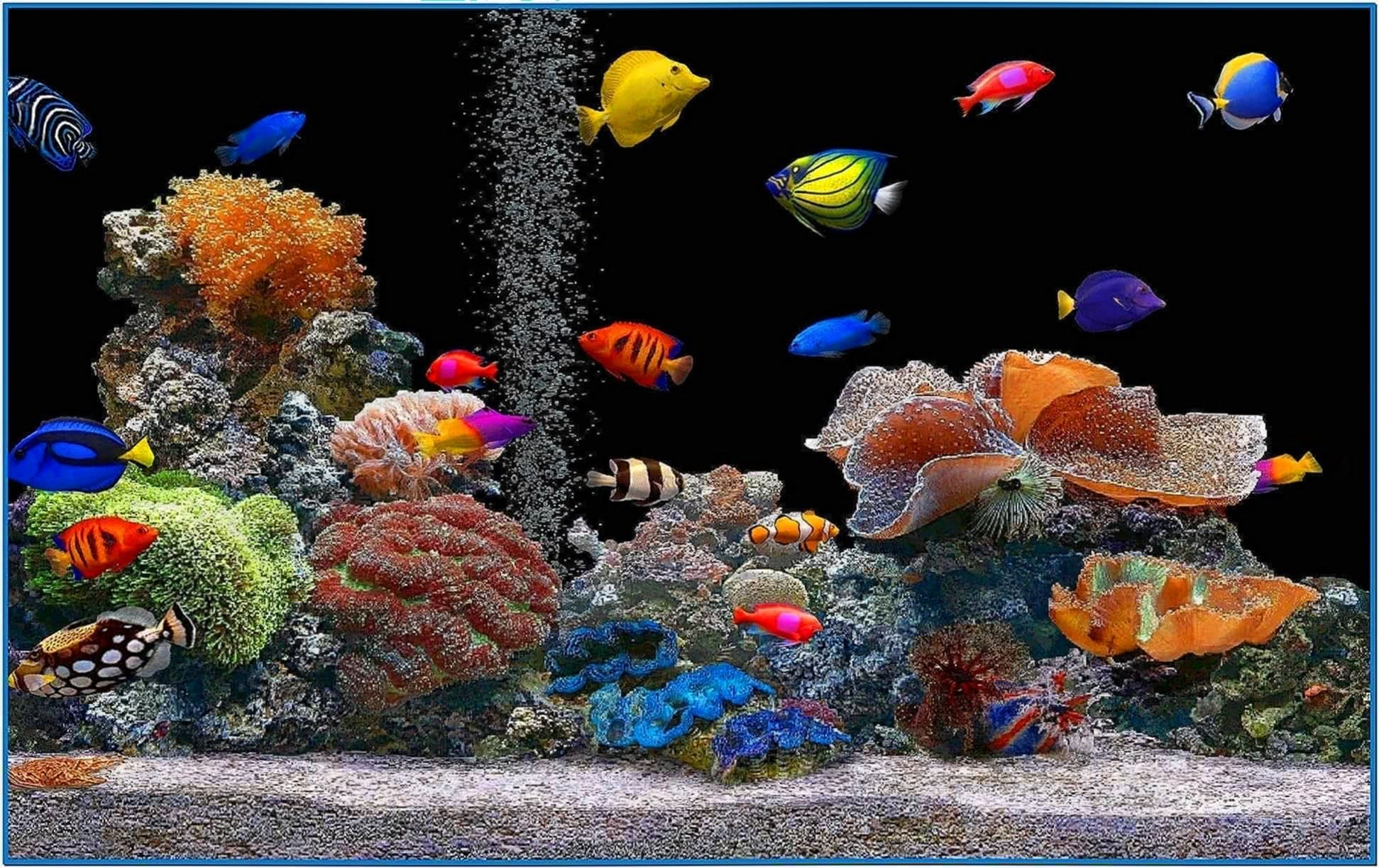Marine aquarium screensaver hd download free for Reef tank fish