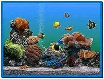 Microsoft aquarium screensaver Windows 7