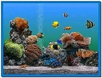 Microsoft Windows 7 aquarium screensavers