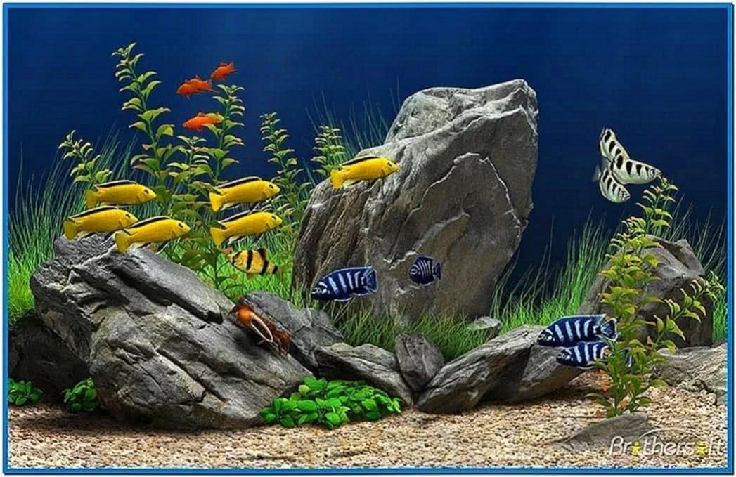 Moving Fish Tank Screensavers