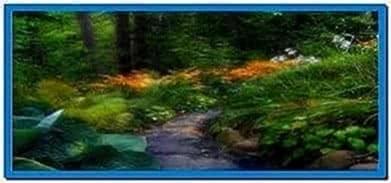Nature Illusion Screensaver 4.5