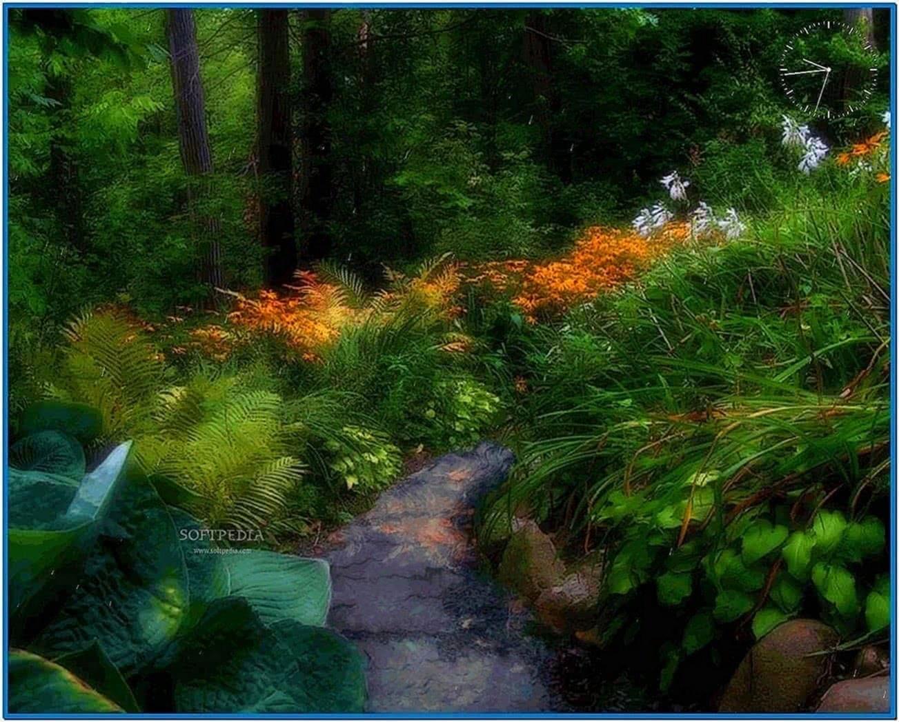 Nature Illusion Screensaver