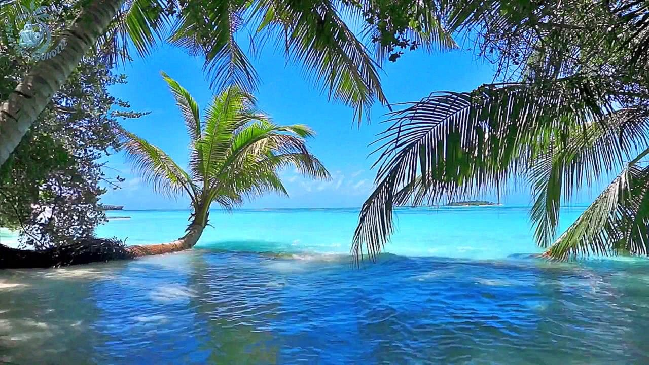 Video Ocean Ambience on a Tropical Island (Maldives)