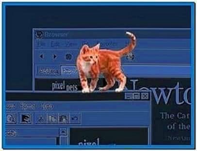 Newton Cat Screensaver
