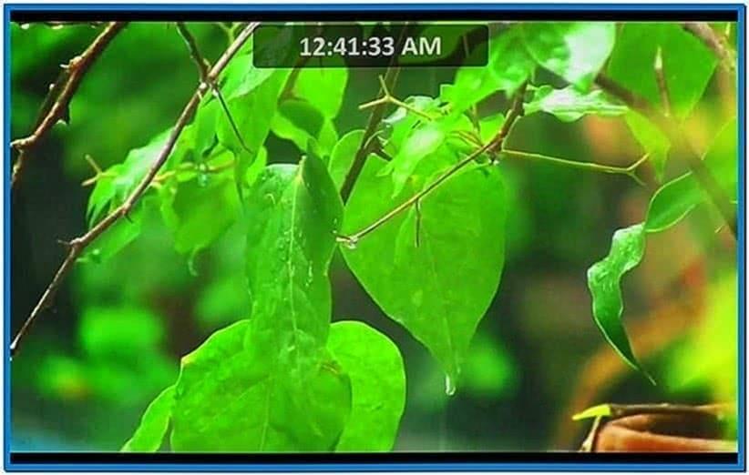 Rainy Day Screensaver Windows 8