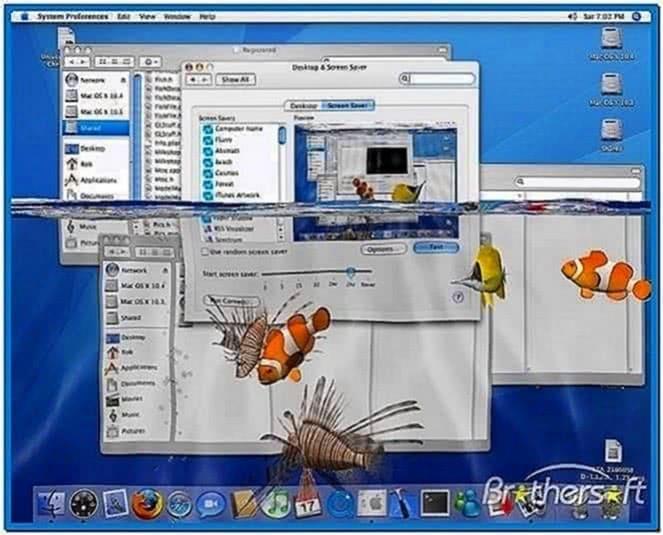 Real aquarium screensaver