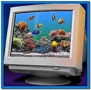 Sachs Marine Aquarium Screensaver