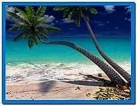 Sandy Beach 3D Screensaver and Animated Wallpaper
