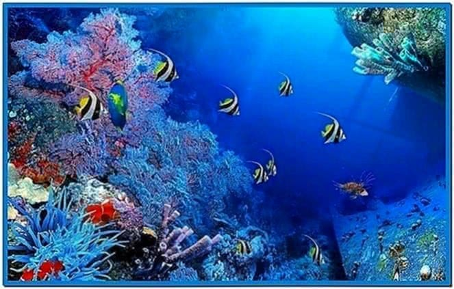 Screensaver Acquario Animato Download Free
