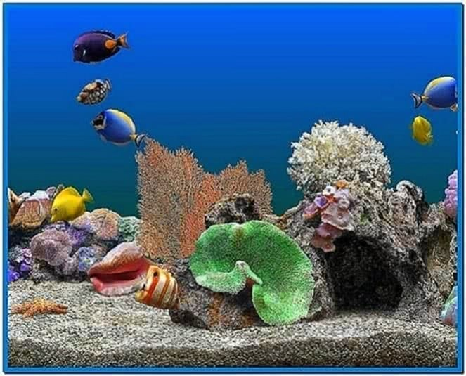 Screensaver Acquario Windows XP