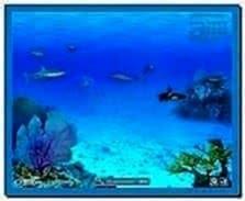 Screensaver Animati X PC