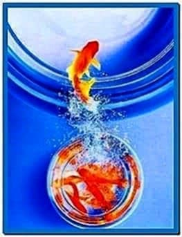 Free download fish screensaver pc