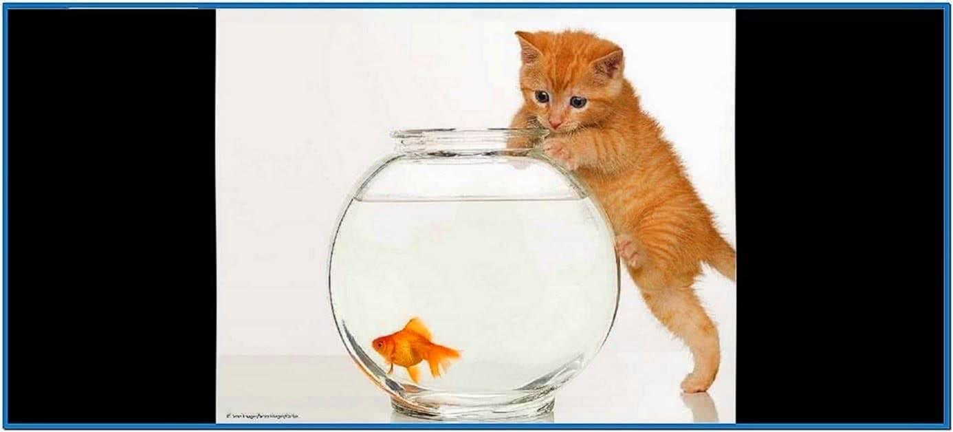Screensaver fish bowl
