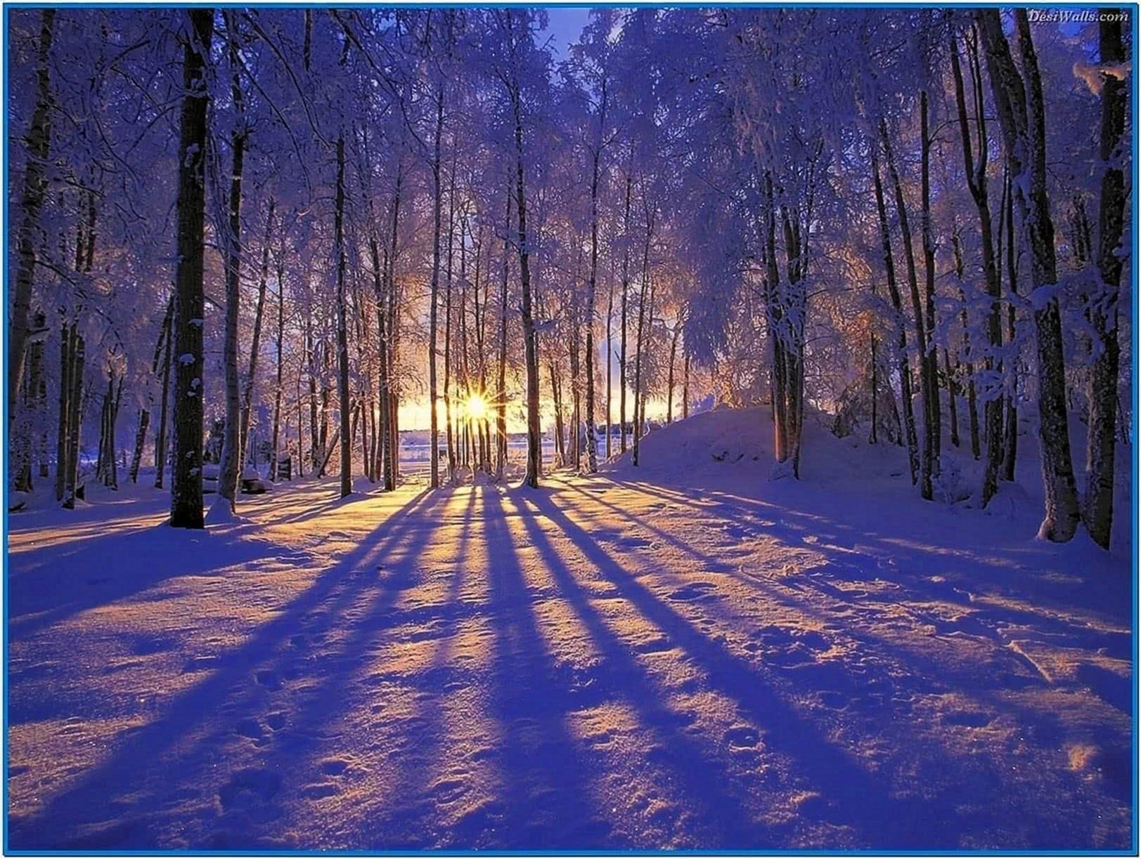 Screensaver winter seen