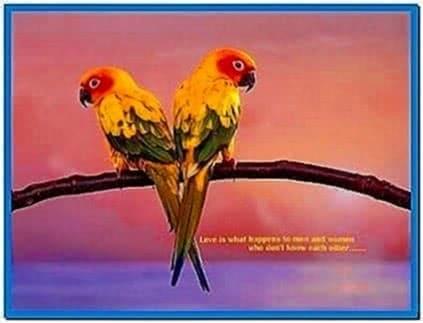 Screensavers and Wallpaper Birds