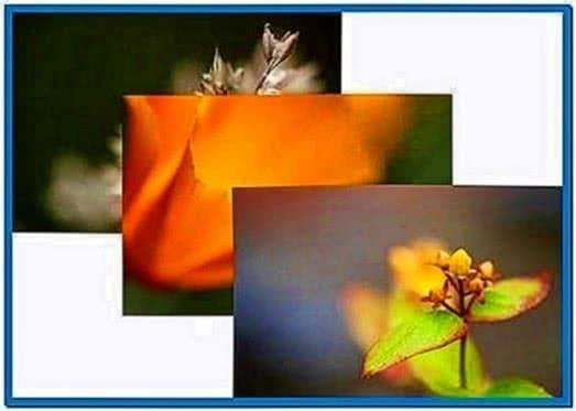 Slideshow Screensaver Ubuntu 12.04