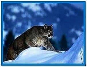 Snow Screensaver Mountain Lion