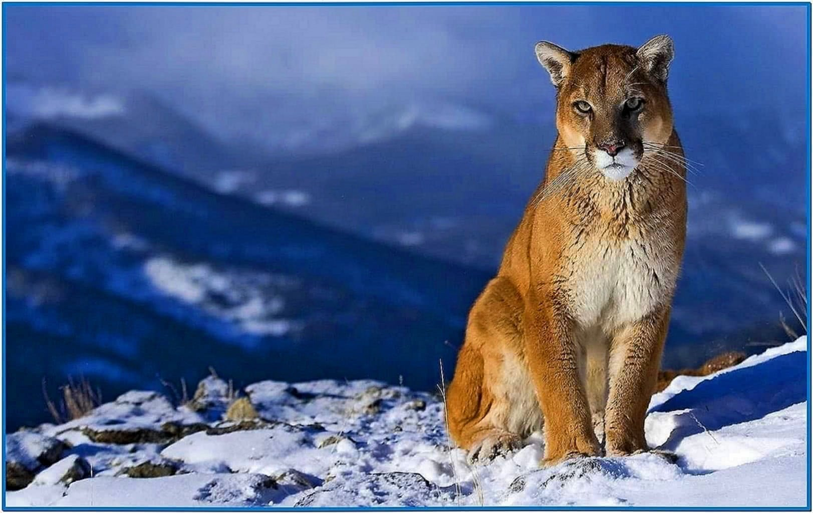 Snow Screensaver Mountain Lion