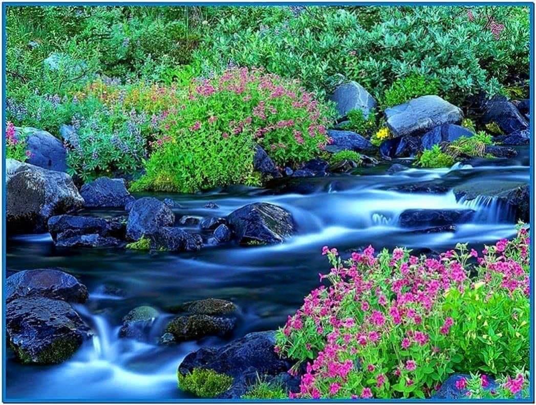 spring flowers screensavers - photo #21