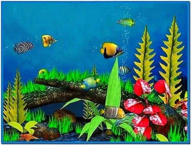 Swimming fish screensaver xp