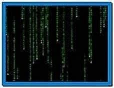 The Matrix Screensaver Version 1.14