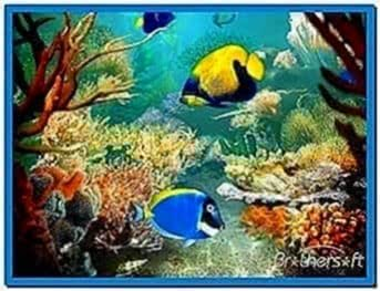 Tropical Fish 3D Screensaver 1.1