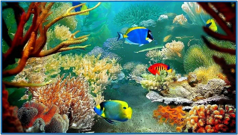 Tropical Fish 3D Screensaver Full