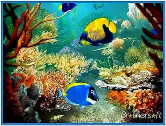 Tropical fish 3d screensaver download free for Moving fish screensaver