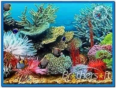 Tropical Fish Tank Screensaver Mac