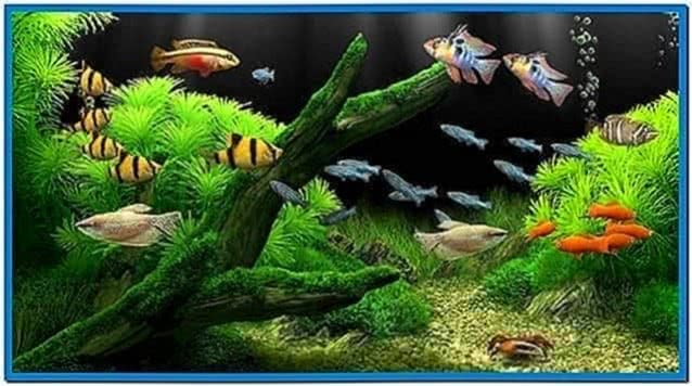 Tropical Fish Tank Screensaver Mac