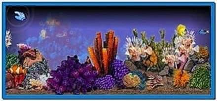 Tropical Fish Tank Screensaver Windows 7