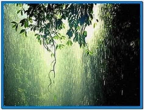 Tropical Rainstorm Screensaver