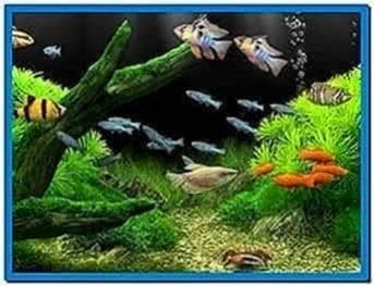 TV Screensaver Aquarium