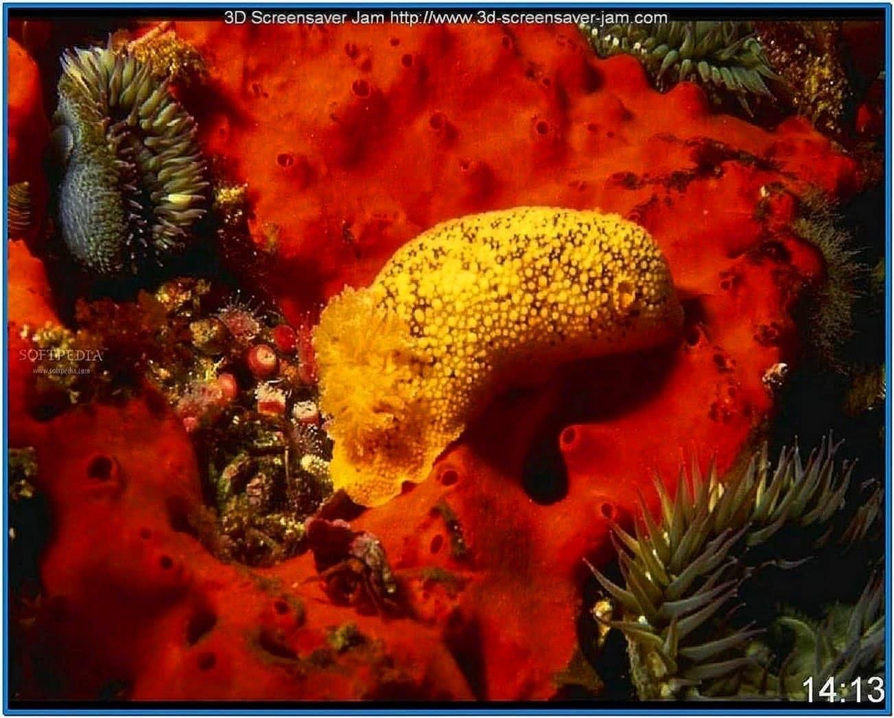 Underwater World Screensaver