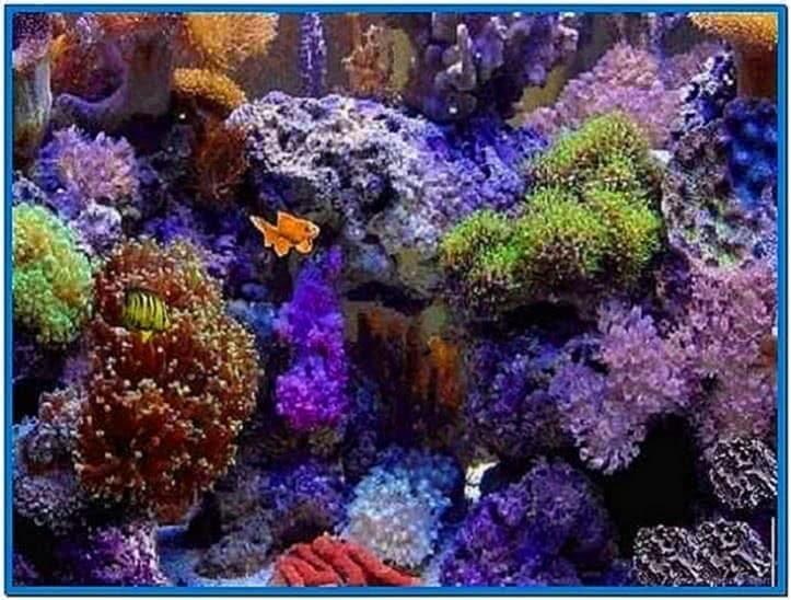 Virtual Aquarium Screensavers