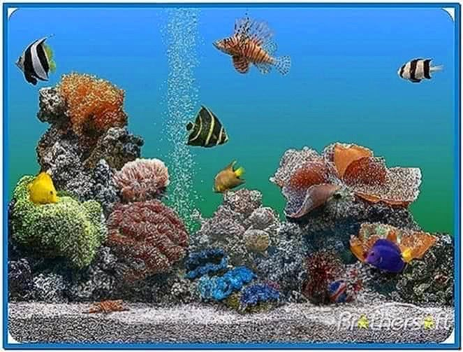 Virtual saltwater aquarium screensaver