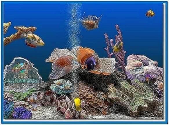 Virtual saltwater aquarium screensaver - Download free