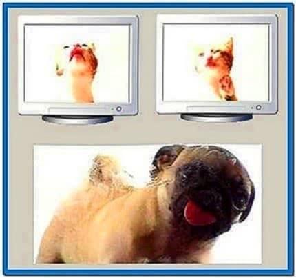 Vodafone Dog Screensaver