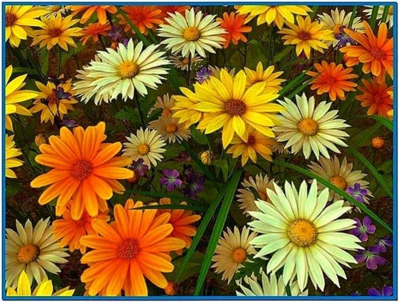 Wild Flowers 3D Screensaver