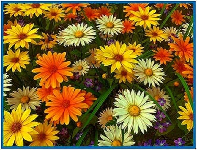 Wild Flowers 3D Screensaver