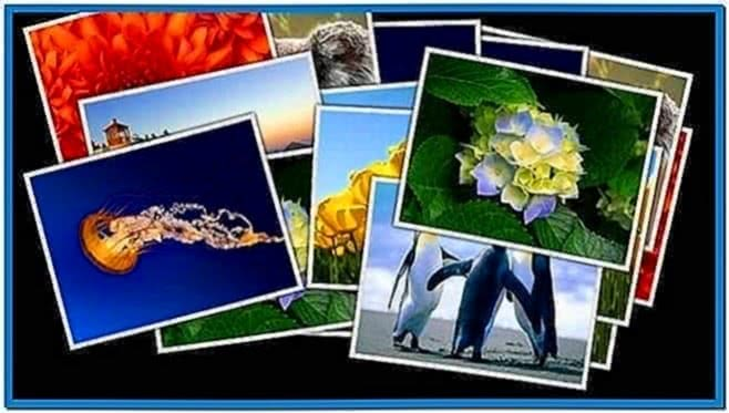 Windows Photo Collage Screensaver