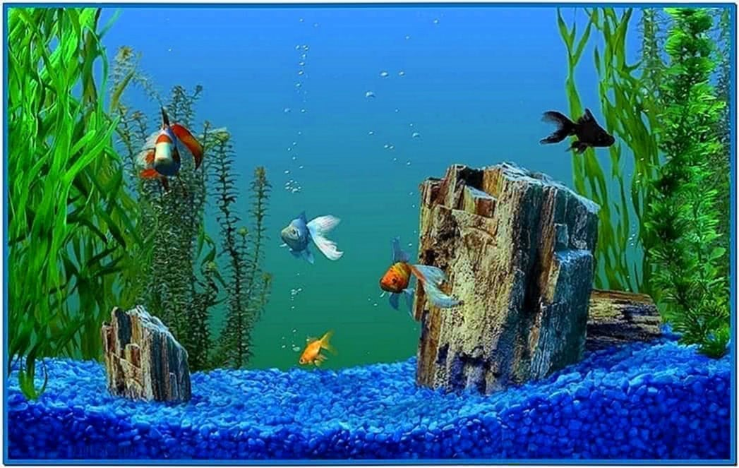 Windows XP Media Center Aquarium Screensaver