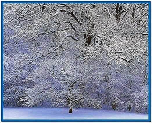 Winter Screensaver Download Pictures to pin on Pinterest