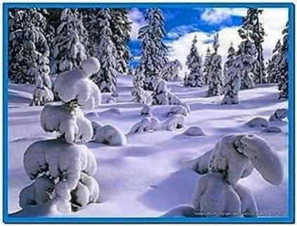 Winter Snow Scene Screensaver